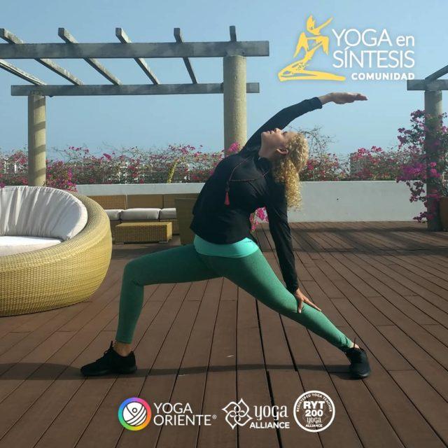 Yoga en Sintesis